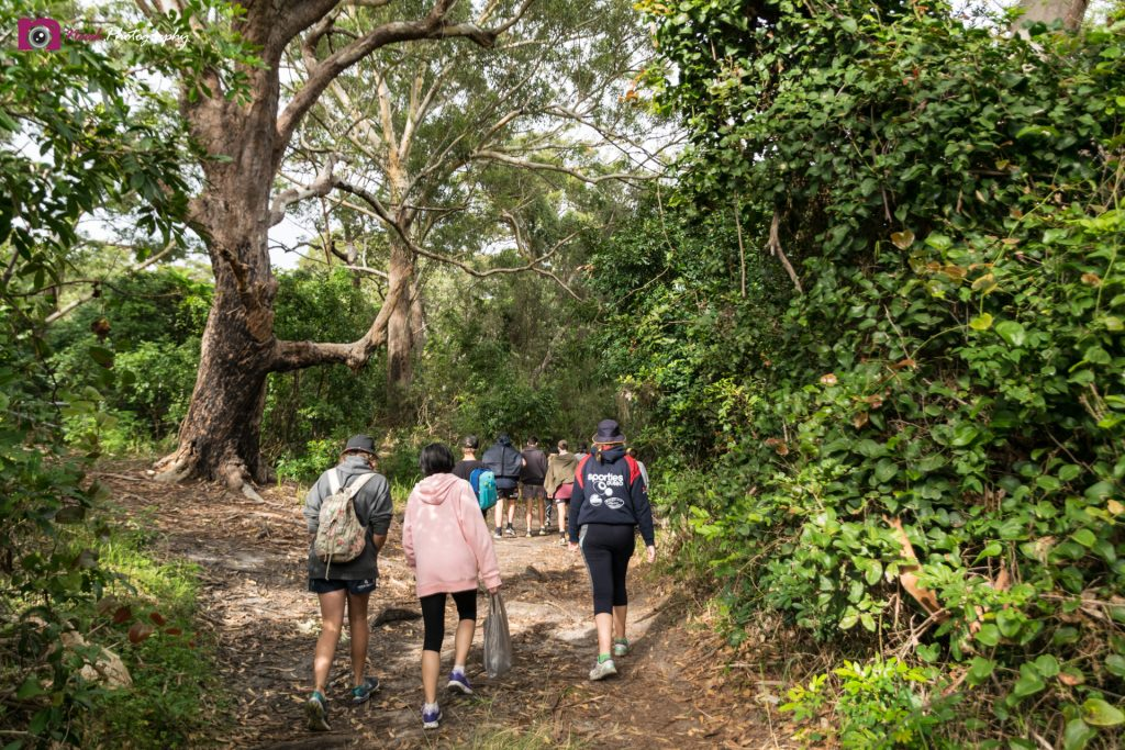 PDHPE Excursion - Bush Walking
