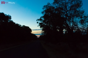 Astrophotography Challenge - Sunset Along Road