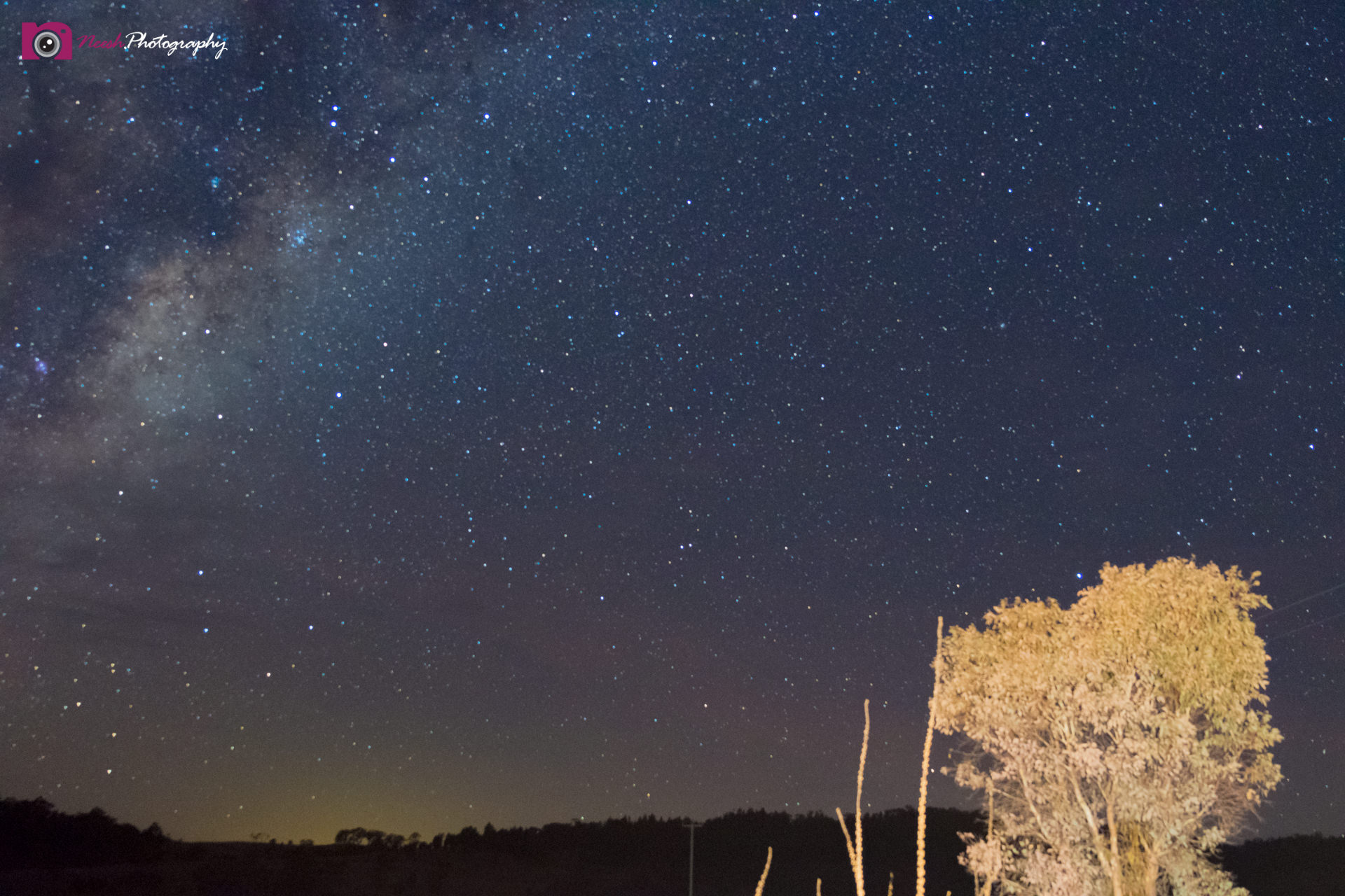 Astrophotography Challenge - Milky Way & Tree Light Painting Fail