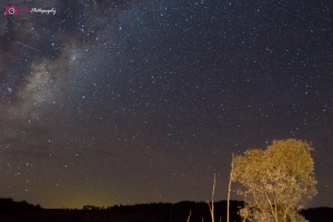 Astrophotography Challenge - Milky Way & Tree Light Painting Better