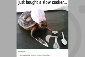 Meme - Slow Cooker
